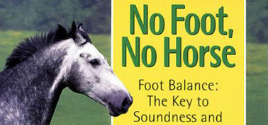 No-Foot-Horse-Soundness-Performance